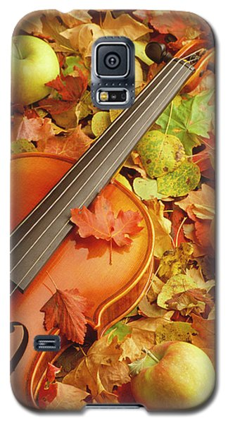 Violin With Fallen Leaves Galaxy S5 Case