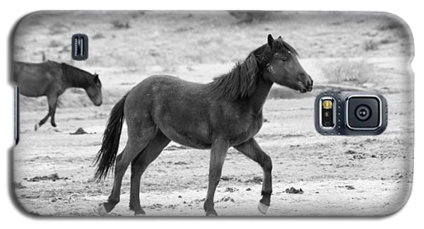 Virginia Range Mustangs Galaxy S5 Case