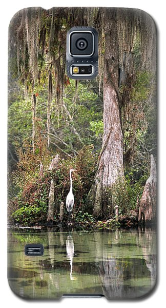 Weeki Wachee River Galaxy S5 Case