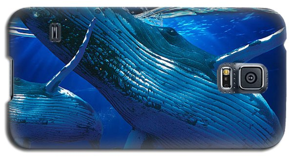 Whale Watching Art Galaxy S5 Case by Marvin Blaine