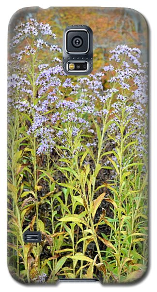 Galaxy S5 Case featuring the photograph Whimsy by Deborah  Crew-Johnson