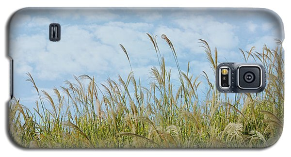 Whispers Of Summer Galaxy S5 Case