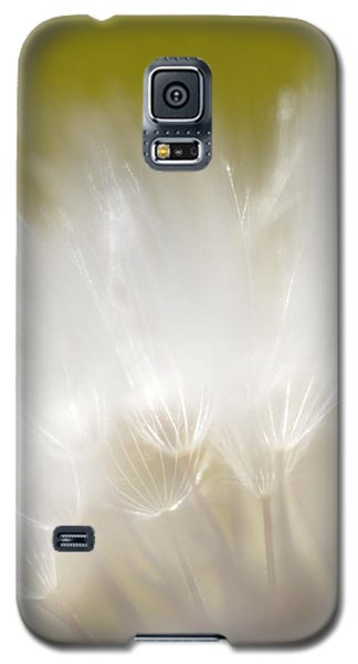 White Blossom 1 Galaxy S5 Case