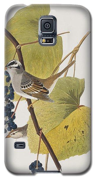 White-crowned Sparrow Galaxy S5 Case by John James Audubon