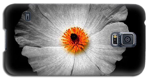 White Flower Galaxy S5 Case by Sylvie Leandre