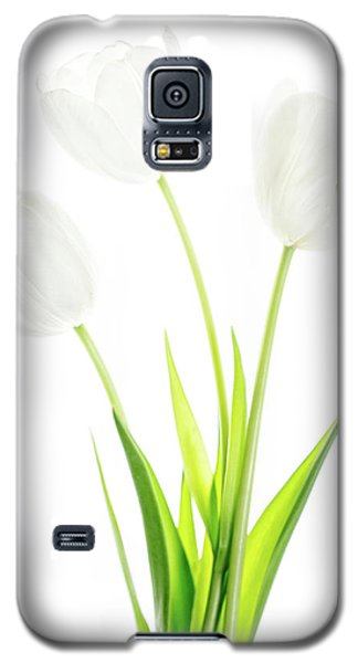 Galaxy S5 Case featuring the photograph White On White by Rebecca Cozart