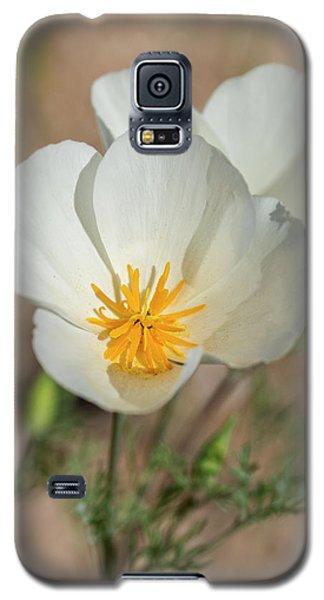 Galaxy S5 Case featuring the photograph White Poppies  by Saija Lehtonen