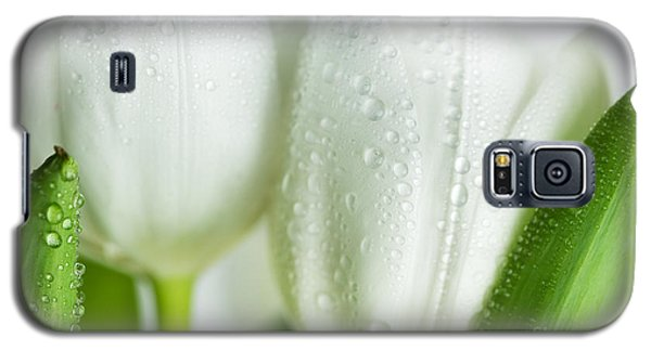 White Tulips Galaxy S5 Case by Nailia Schwarz