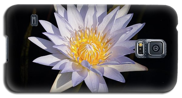 Galaxy S5 Case featuring the photograph White Water Lily by Steve Stuller