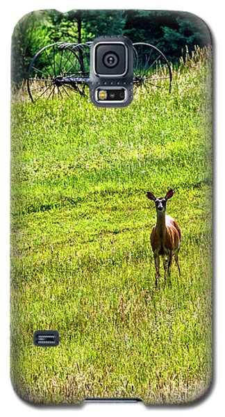 Galaxy S5 Case featuring the photograph Whitetail Deer And Hay Rake by Thomas R Fletcher