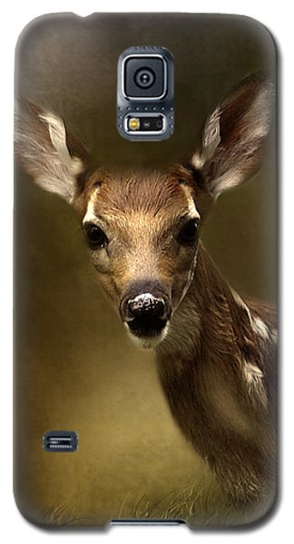 Whitetail Fawn Galaxy S5 Case