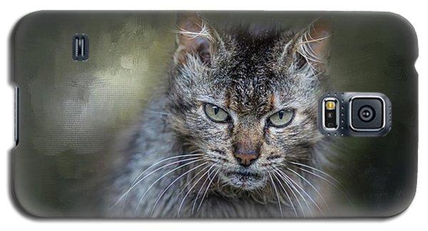Wild Cat Portrait Galaxy S5 Case