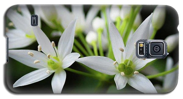 Wild Garlic Galaxy S5 Case