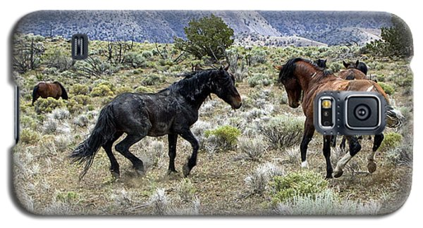Wild Mustang Stallions Fighting Galaxy S5 Case