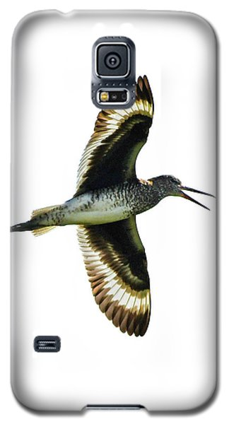 Willet Galaxy S5 Case