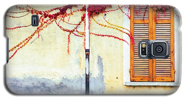 Galaxy S5 Case featuring the photograph Window And Red Vine by Silvia Ganora