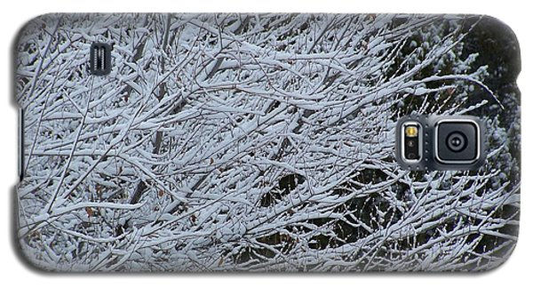Winter At Dusk Galaxy S5 Case
