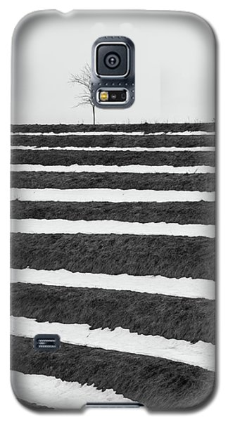 Winter Blues Galaxy S5 Case