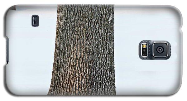 Winter Scene - Abstract Galaxy S5 Case