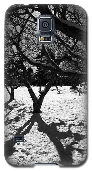 Galaxy S5 Case featuring the photograph Winter Shadows by Yulia Kazansky