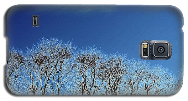 Winter Trees And Sky 3  Galaxy S5 Case