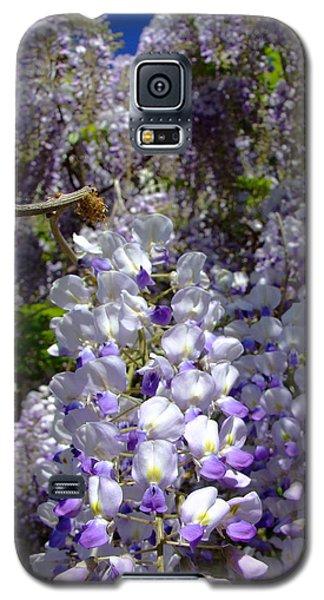 Wisteria Cascading Galaxy S5 Case