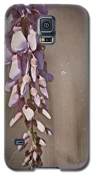 Wisteria Dreams- Fine Art Galaxy S5 Case