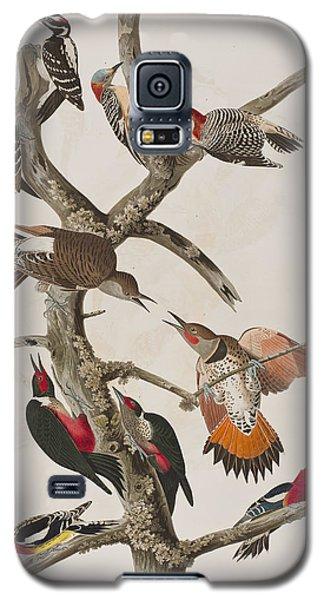 Audubon Galaxy S5 Case - Woodpeckers by John James Audubon