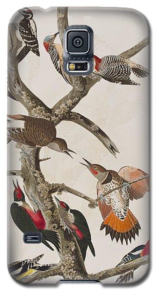 Woodpeckers Galaxy S5 Case