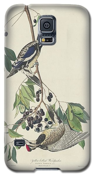 Yellow-bellied Woodpecker Galaxy S5 Case by Rob Dreyer
