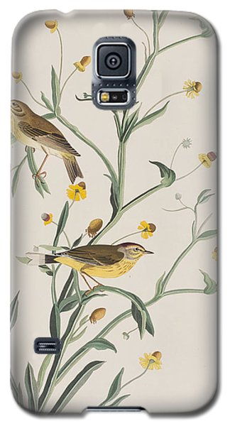 Yellow Red-poll Warbler Galaxy S5 Case by John James Audubon