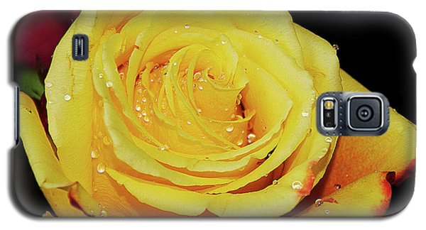 Galaxy S5 Case featuring the photograph Yellow Rose by Elvira Ladocki