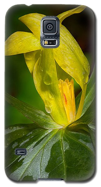Yellow Trillium Galaxy S5 Case