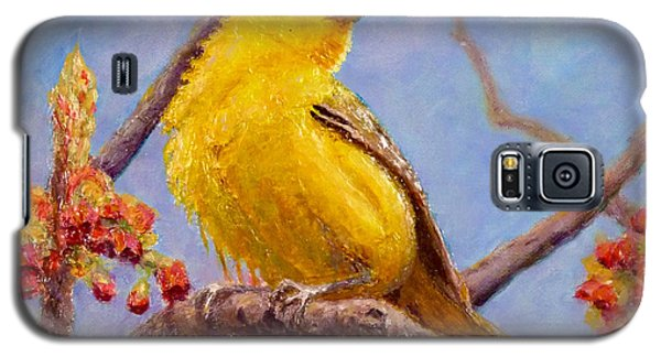 Yellow Warbler Galaxy S5 Case by Joe Bergholm