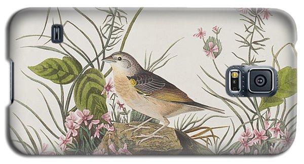 Yellow-winged Sparrow Galaxy S5 Case by John James Audubon