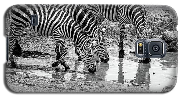 Galaxy S5 Case featuring the photograph Zebras At The Watering Hole by Marion McCristall