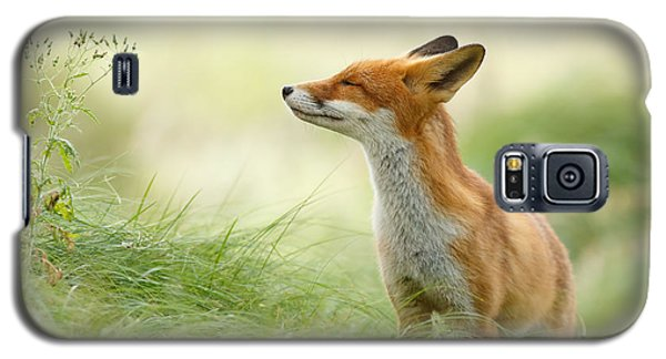 Zen Fox Series - Zen Fox Galaxy S5 Case by Roeselien Raimond