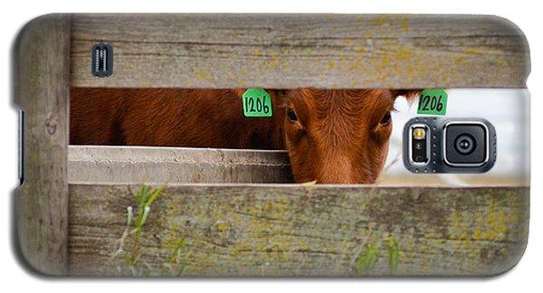 1206 Galaxy S5 Case