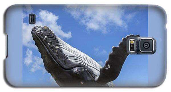 150729p196 Galaxy S5 Case