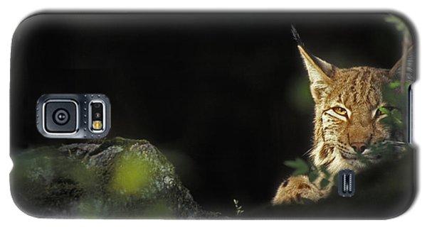 151001p105 Galaxy S5 Case