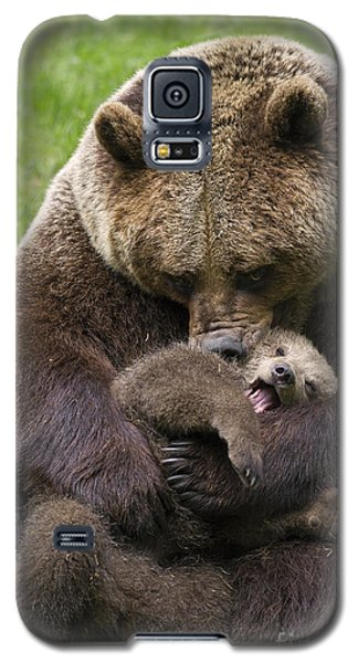 Mother Bear Cuddling Cub Galaxy S5 Case by Arterra Picture Library