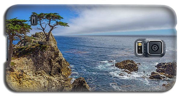 Galaxy S5 Case featuring the photograph 17 Mile Drive Pebble Beach by Scott McGuire