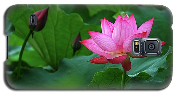 Blossoming Lotus Flower Closeup Galaxy S5 Case