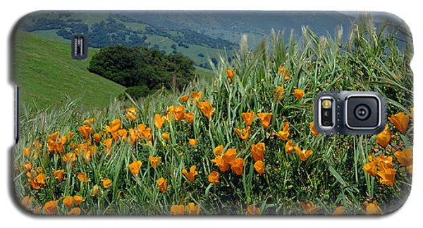 1a6493 Mt. Diablo And Poppies Galaxy S5 Case