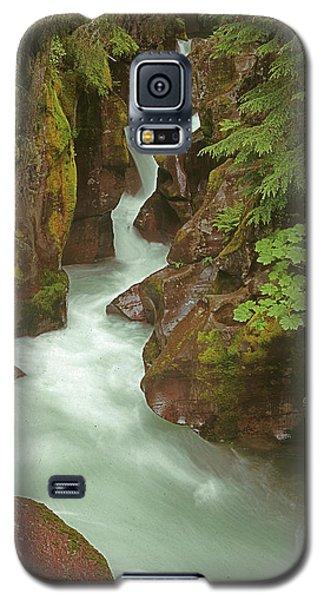 1m8115 Avalanche Gorge Mt Galaxy S5 Case