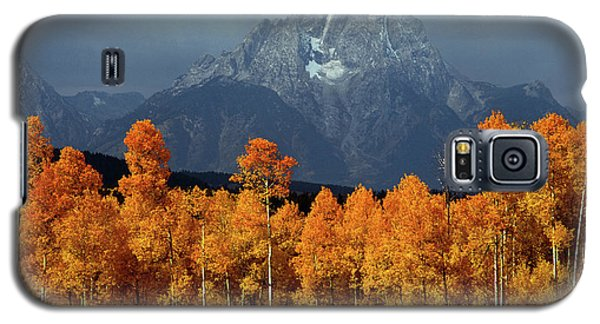 1m9235 Mt. Moran In Autumn Galaxy S5 Case