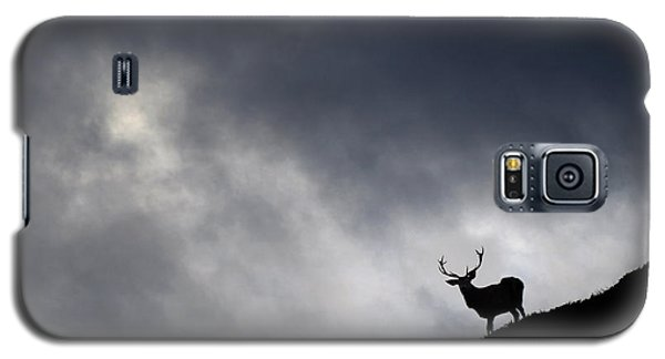 Stag Silhouette Galaxy S5 Case