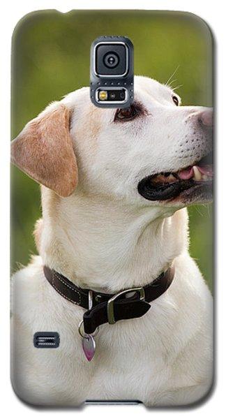 10 Galaxy S5 Case by Rebecca Cozart