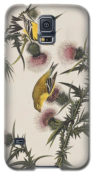 American Goldfinch Galaxy S5 Case by John James Audubon