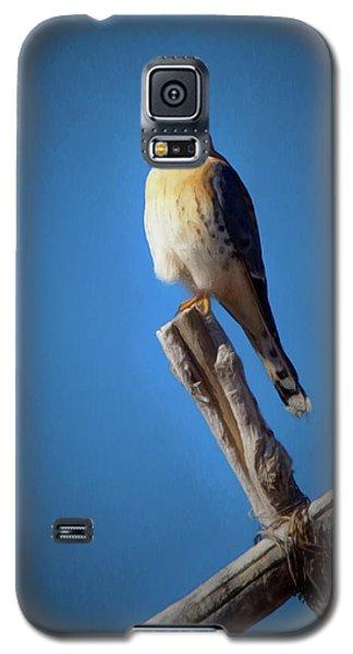 Galaxy S5 Case featuring the digital art American Kestrel by Ernie Echols